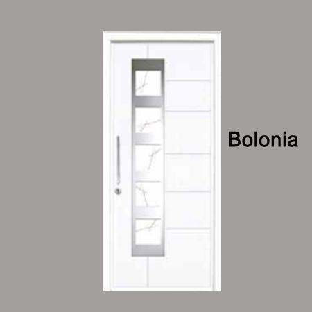 puerta de calle con vidrio modelo bolonia