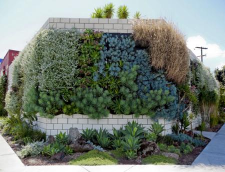 Jardineras decorativas verticales para paredes for Pockets jardin vertical